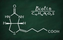 维生素B6生物素几何相似模型  库存例证