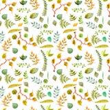 用不同的叶子的无缝的水彩背景 免版税库存照片