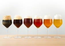 用不同的啤酒的六块玻璃 库存照片