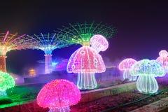 用不同的形状的霓虹灯 免版税库存照片