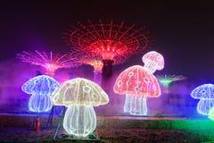 用不同的形状的霓虹灯 库存照片