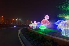 用不同的形状的霓虹灯 库存图片