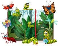 用不同的昆虫的书在庭院里 库存例证