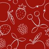 用不同的果子的样式 库存图片