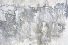用不同的树荫的老白色墙壁 图库摄影