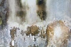 用不同的树荫的老白色墙壁 免版税库存图片
