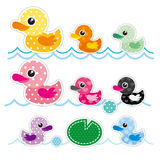 五颜六色的小的鸭子 免版税图库摄影