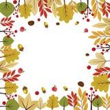 用不同的秋叶的美好的秋季背景 免版税库存照片
