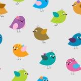 用不同的色的鸟的逗人喜爱的无缝的样式 免版税库存照片