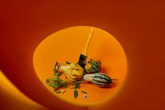 用不同的装饰南瓜的创造性的秋天构成 免版税库存照片