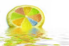 用不同的颜色的柠檬切片 库存图片