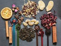用不同的香料的被分类的茶 免版税库存照片