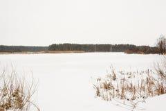 用与一个森林的雪盖的冬天河岸的 库存照片