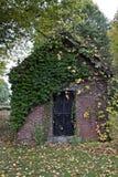 用与五颜六色的叶子的常春藤盖的小棚子在地面上 免版税库存图片