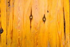 用与棕色静脉的亮漆盖的老,古老木墙壁,纤维和结的黄色纹理 抽象背景异教徒青绿 库存照片
