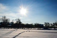 用与爪子踪影的雪报道的领域,在积雪的树和房子旁边在一个晴朗的冬日反对多云天空, B 库存图片