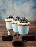用乳脂干酪结霜装饰的南瓜杯形蛋糕和新鲜的蓝莓复制空间 库存照片