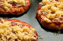 用乳酪或小药丸盖的微型薄饼 库存图片