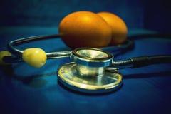 用于鸡蛋的体外受精过程蛋检索做法实验室受精的高科技实验室设备 免版税图库摄影