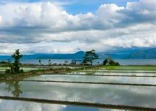 用云彩的水和反射报道的米领域 库存图片