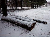 用从第一场风暴的雪盖的日志 库存图片
