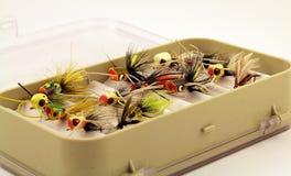 用假蝇钓鱼在一个小飞行通话盒诱使 库存图片