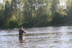 用假蝇钓鱼我Byskeälv, Norrland瑞典 库存照片