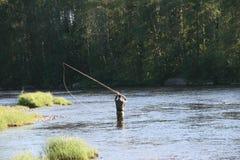 用假蝇钓鱼我Byskeälv, Norrland瑞典 图库摄影