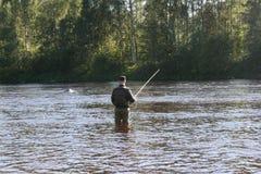 用假蝇钓鱼我Byskeälv, Norrland瑞典 免版税图库摄影
