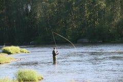 用假蝇钓鱼我Byskeälv, Norrland瑞典 免版税库存照片