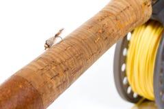 用假蝇钓鱼齿轮标尺和卷轴 免版税库存照片