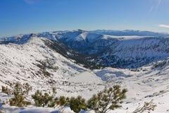 用冰和雪盖的Heart湖在mounta的冬天 免版税库存图片