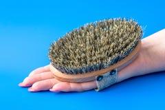 用刺毛掠过由马毛制成在女性手 免版税库存照片