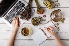 用医药草本酿造清凉茶的愉快的妇女 免版税库存图片