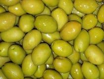用卤汁泡的橄榄 图库摄影