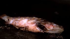 用卤汁泡的海鱼用在平底锅的金黄外壳油炸物有油的 股票录像