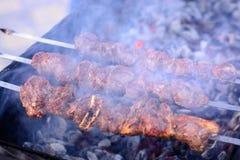 用卤汁泡的肉在格栅的煤炭,在串的烤肉串烤了 春天周末,野餐 库存照片