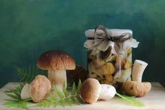 用卤汁泡的蘑菇 免版税库存图片