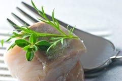 用卤汁泡的鱼 免版税库存图片