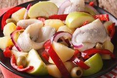用卤汁泡的鲱鱼用土豆,绿色苹果,葱, pe沙拉  免版税库存照片