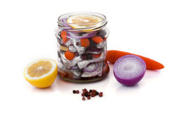 用卤汁泡的鲱鱼用在一个玻璃瓶子的香料 免版税库存图片