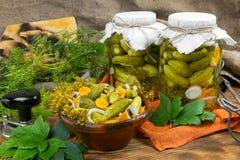 用卤汁泡的黄瓜,在碗,黄瓜腌汁集合的黄瓜 免版税库存图片