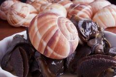 用卤汁泡的escargot 免版税图库摄影