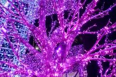 用发光的紫色氖和拱道装饰的树 库存照片