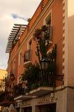 用各种各样的植物和花美妙地装饰的小阳台 免版税库存图片