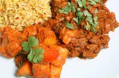 用咖哩粉调制食物印第安羊羔膳食 图库摄影