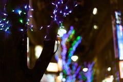 用圣诞灯装饰的树在东京,日本 免版税库存图片