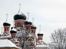 用在天空背景的雪盖的复活大教堂的圆顶 免版税库存图片