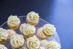 用在清楚的有排列的盘子关闭的深蓝和桃红色糖果小珠装饰的香子兰豆微型杯形蛋糕 图库摄影