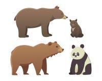 用在白色背景隔绝的不同的动画片熊的汇集 传染媒介broun和黑美国熊 设置野生生物 库存例证